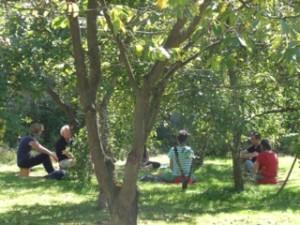 meditatie boomgaard
